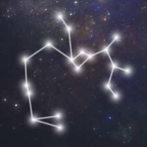 Hvornår er skytten født - skytten stjernetegn